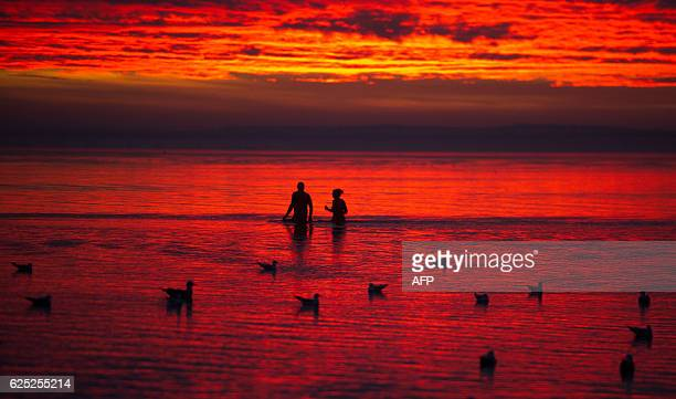 TOPSHOT People and seagulls bathe in the sea as the sun goes up with red colors in Stralsund close to the baltic sea island of Rügen on early...