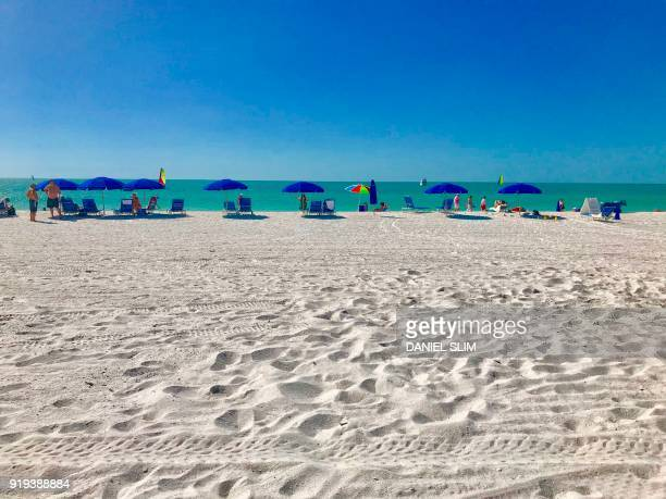People and umbrellas line up along the beach in Marco Island off Southwest Florida on February 14 2018 / AFP PHOTO / Daniel SLIM
