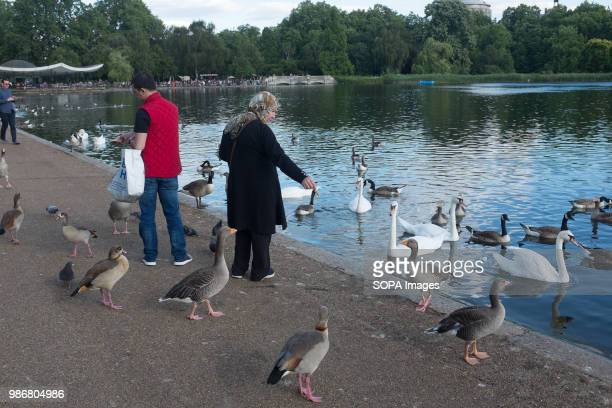People are feeding the birds in Hyde park London London is the Capital city of England and the United Kingdom it is located in the south east of the...