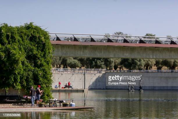 People are seen at Juan Carlos I park during the first weekend of phase 1 of the government's COVID19 deescalation plan in Madrid on May 30 2020 in...