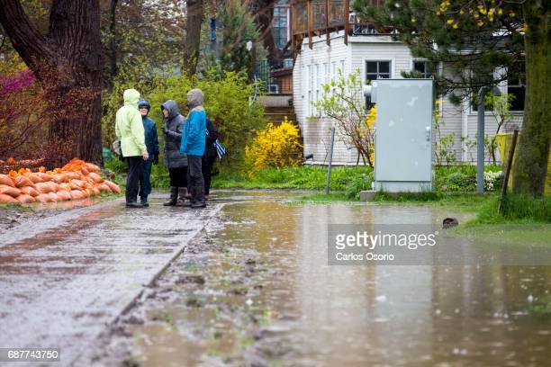TORONTO ON MAY 5 People are seen on wards Island Toronto Mayor John Tory visited the Wards Island to see the flooding efforts and water levels