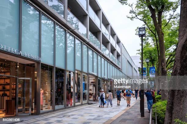 people are shopping in omotesando-dori(street) - 表参道 ストックフォトと画像