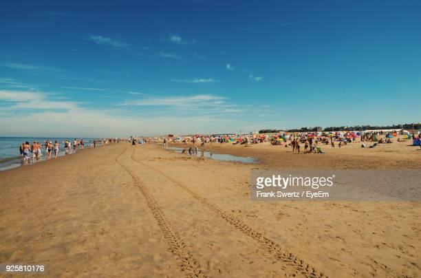 people at beach against blue sky - frank swertz stock pictures, royalty-free photos & images