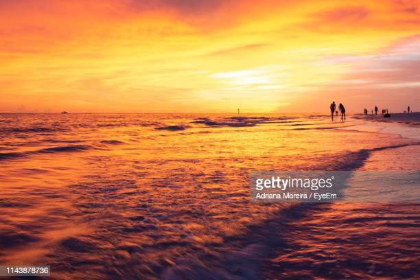 people at beach against sky during sunset - sarasota stock pictures, royalty-free photos & images