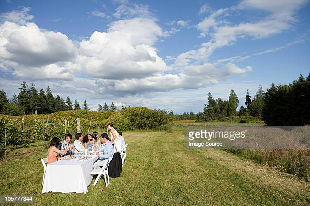 people at dinner party on a farm - farm to table stock photos and pictures