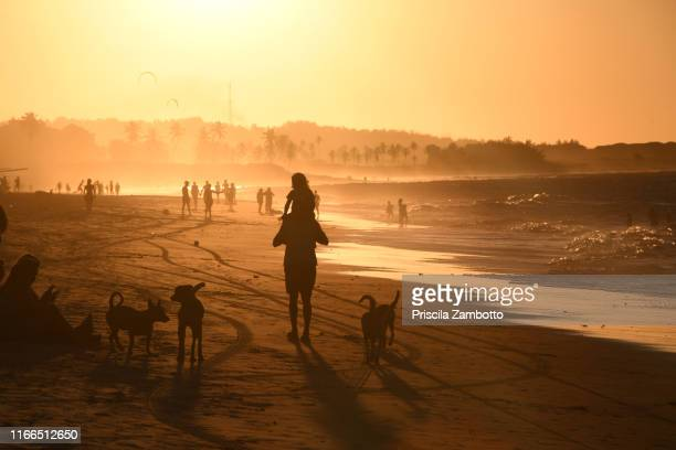 people at sunset on the cumbuco beach, caucaia, ceará, brazil - セアラ州 ストックフォトと画像