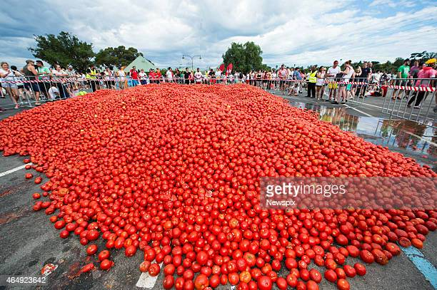 5000 people attempt to replicate Spain's famous La Tomatina tomatothrowing festival at Flemington Racecourse on February 27 2015 in Melbourne...