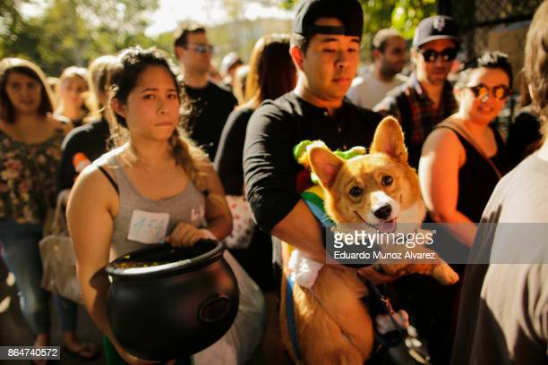 People attend with their dogs the 27th Annual Tompkins Square Halloween Dog Parade in Tompkins Square Park on October 21, 2017 in New York City. More...
