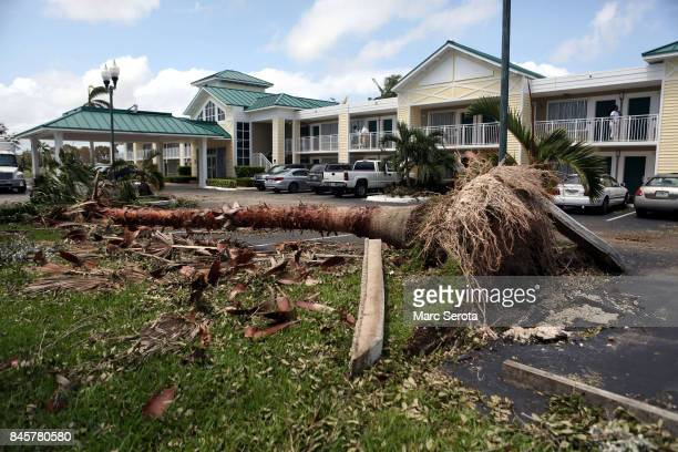 People begin cleaning up after Hurricane Irma on September 11 2017 in Key Largo Florida Irma made landfall as a Category 4 storm twice in the United...