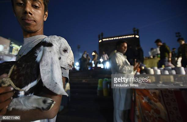 People buying goats at a livestock market ahead of the sacrificial Eid alAdha festival at Jama Masjid on September 12 2016 in New Delhi India Muslims...