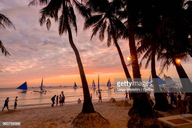 people by palm trees at beach during sunset - manila stock photos and pictures