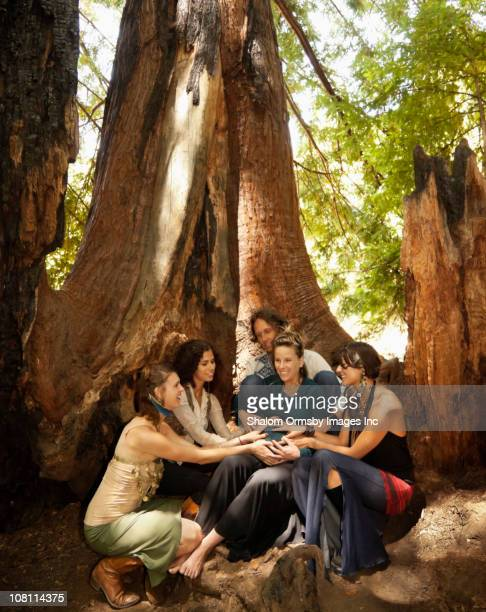 people caressing pregnant woman's belly in forest - naturist male stock pictures, royalty-free photos & images