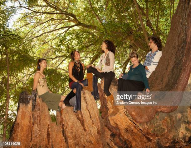 people climbing on stump of large tree - naturist male stock pictures, royalty-free photos & images