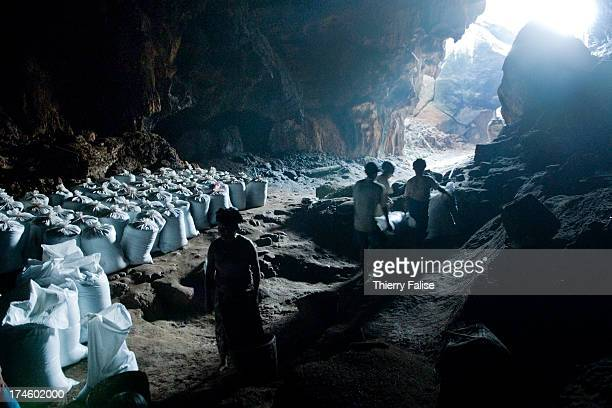 People collect bats guano in a cave. The guano is sold as fertilizer..