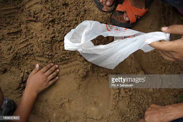 People collect plant and rice seeds from the annual Royal Ploughing Ceremonyat Sanam Luang Thailand's Crown Prince Maha Vajiralongkorn and Princess...