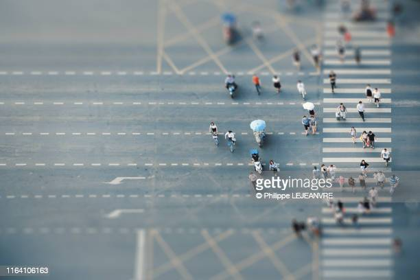 people crossing a road on zebras - zebra crossing stock pictures, royalty-free photos & images