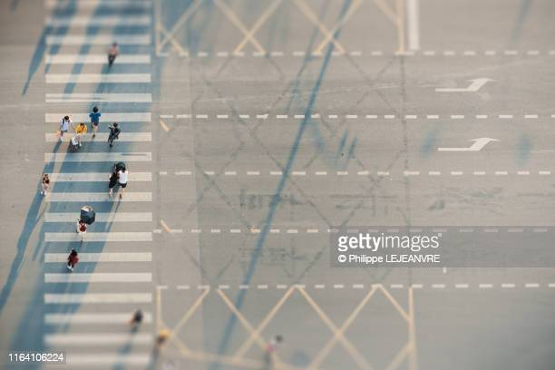 people crossing a road on zebras - crossing stock pictures, royalty-free photos & images
