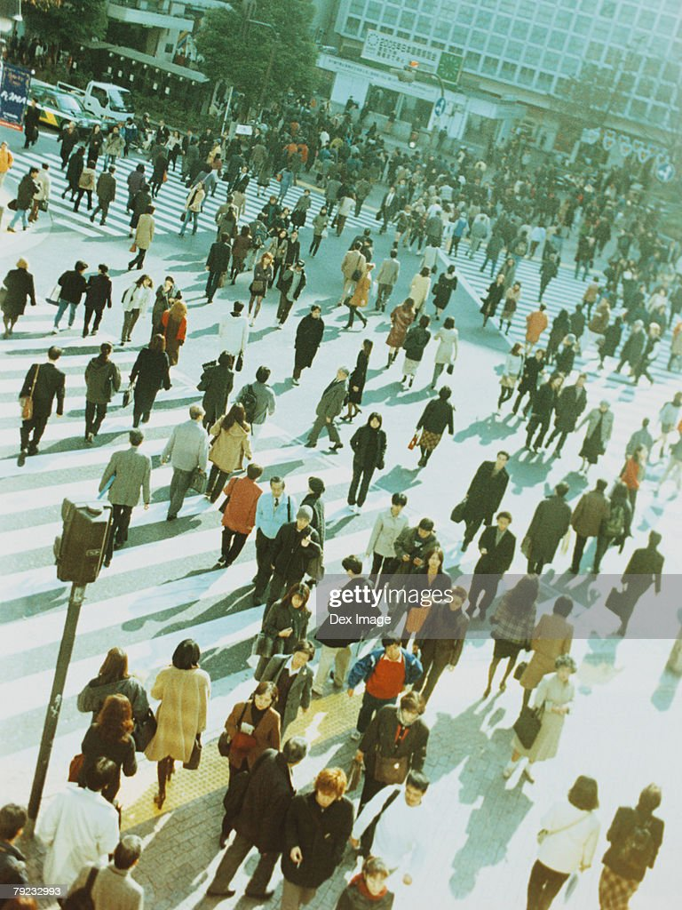 People crossing city street, Shibuya, Tokyo, Japan : Stock Photo