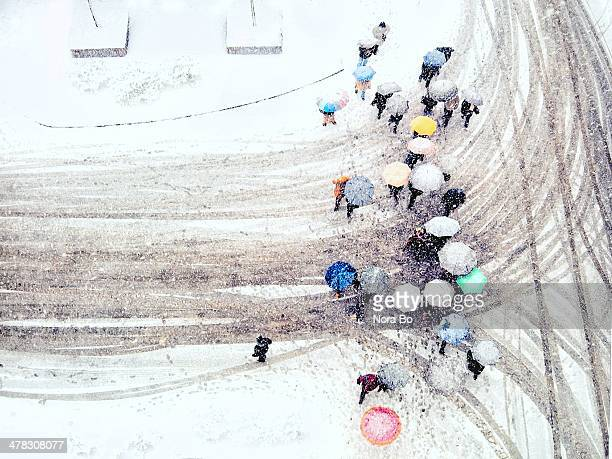 People crossing snow-covered street