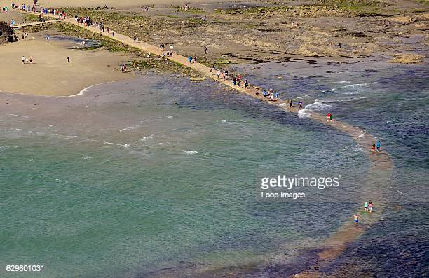 People crossing the tidal causeway from St Michael's Mount to Marazion as the tide comes in. , Marazion, England.