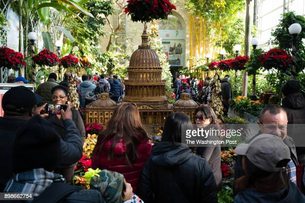 People crowd around the replica of the capitol The United States Botanic Garden is one of the few attractions that is open on December 25 It is one...