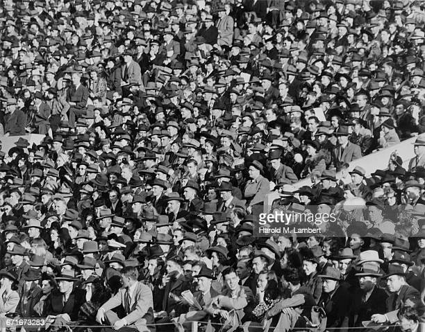 people crowd on street together - number of people stock pictures, royalty-free photos & images