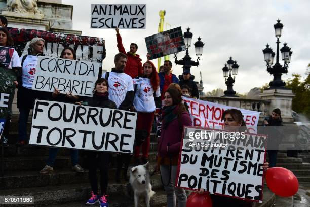 People demonstrate and hold placards against fure and corrida to defend animal rights during the first Animal's Pride on November 5 2017 in Bordeaux...
