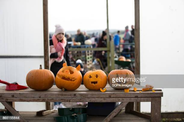 People designed some of the pumpkins in an halloween style during the pumpkin festival Pumpkin market is one of the exiting things locals can...