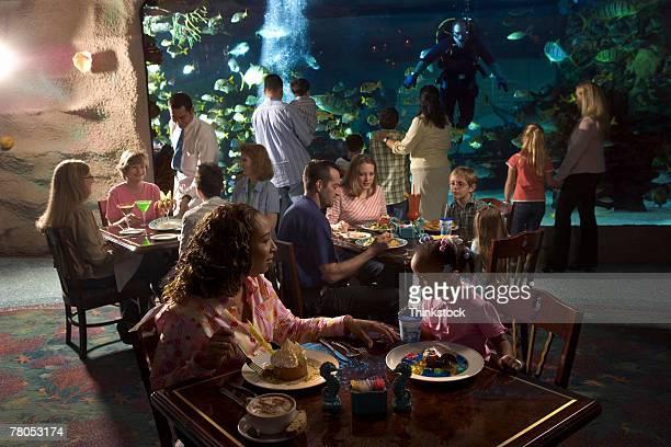 people dining at restaurant inside aquarium - thinkstock foto e immagini stock