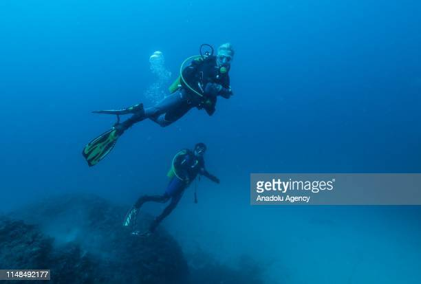 People dive at Karaburun district of Turkey's western Izmir province on June 06, 2019. Diving tourism instantly increased after Culture and Tourism...