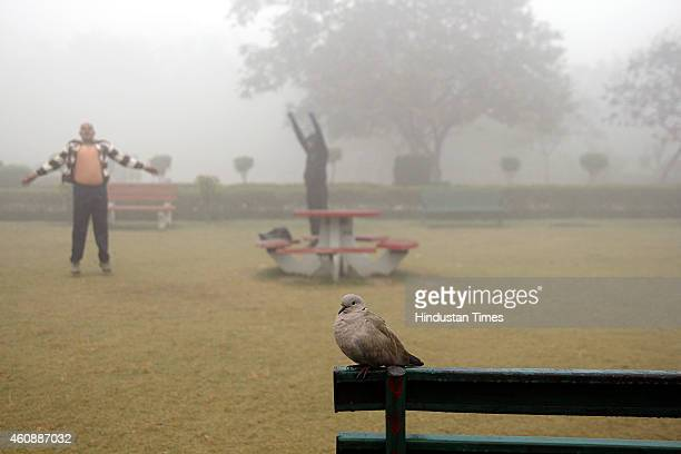 People doing their morning exercise in park amidst dense fog on a cold morning on December 29 2014 in New Delhi India It was a chilly morning with...