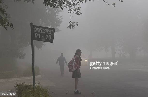 People doing their routine work on the foggy morning on December 1 2016 in Gurgaon India Traffic was moving slowly especially on the DelhiNoida and...