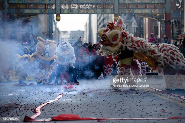 people dressed as lions and dragons dance through firecrackers to celebrate chinese new year in chinatown - Chinese New Year Dc