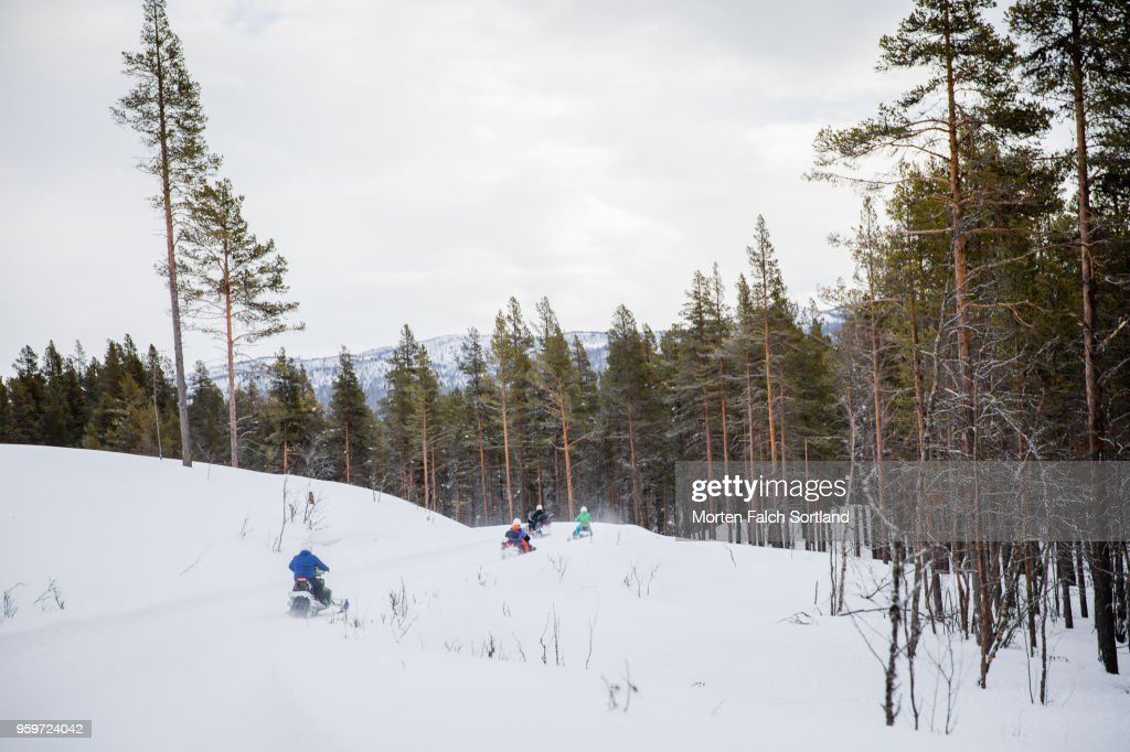 People Drive Snowmobiles into a Mountain Forest in Rural Norway, Wintertime : Stock-Foto