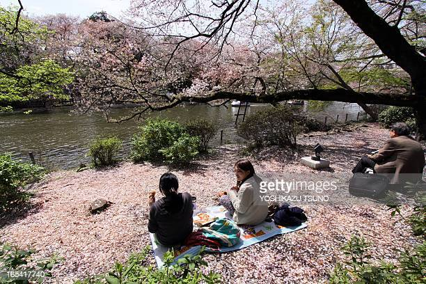 People enjoy a picnic on the banks of a pond covered with petals of cherry blossoms at a park in Tokyo on April 4 2013 People enjoy falling of the...
