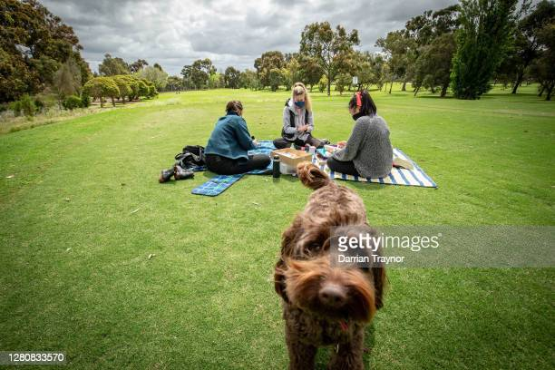 People enjoy a picnic on the Royal Park Golf Course on October 18, 2020 in Melbourne, Australia. Victoria recorded two new COVID-19 cases and no...