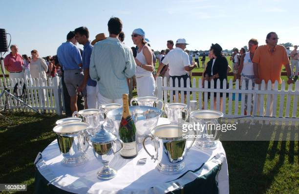 People enjoy an afternoon at the Mercedes-Benz Polo Challenge July 21, 2001 in Bridgehampton, NY. The Hamptons, located at the east end of New...