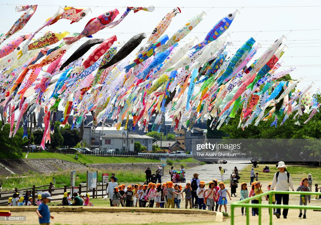 Carp Streamer Festa Begins In Takatsuki