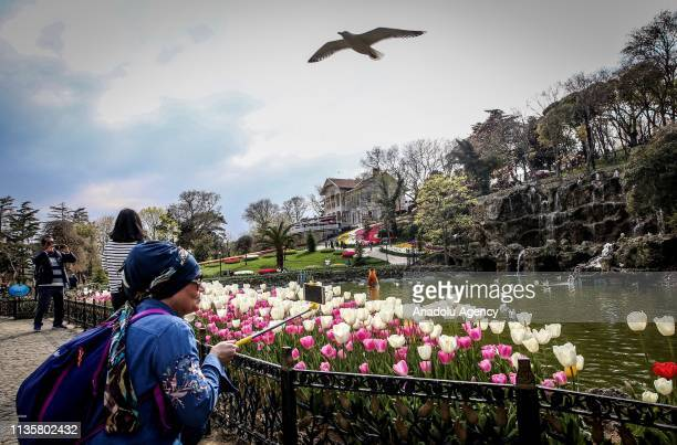 People enjoy taking photos of the colorful tulips at the Emirgan Park in Sariyer district of Istanbul, Turkey on April 08, 2019.