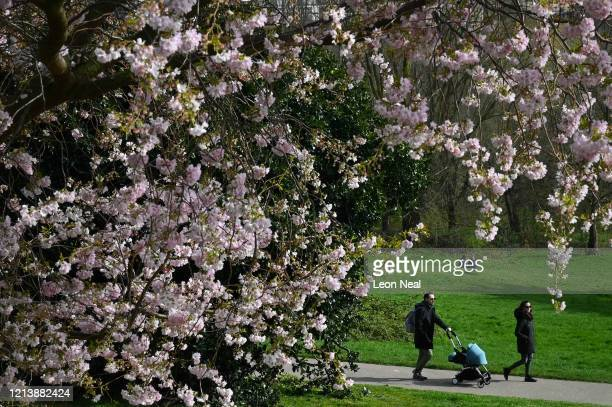 People enjoy the sunshine and spring blossom in Alexandra Park, as the Government warns the country to maintain social distance from others and...