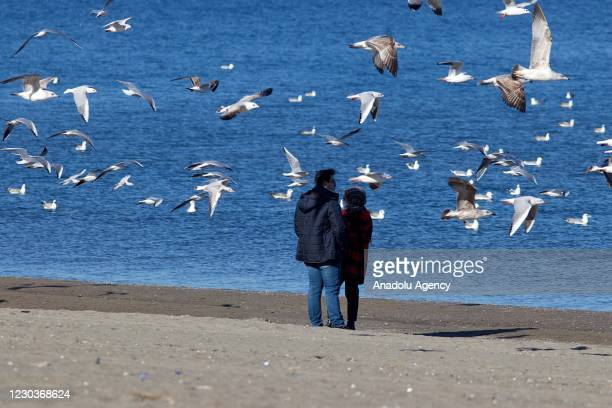 People enjoy the view of sea and seagulls flying around as temperature reaches 20 degrees Celsius on a sunny day in Samsun, Turkey on December 31,...