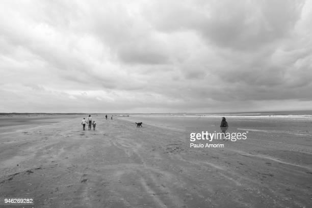 People Enjoying on the beach at North Sea