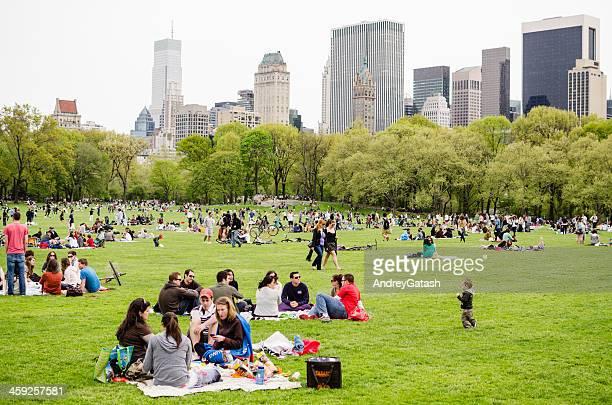 Pessoas usufruem de piquenique no Central Park, Nova Iorque
