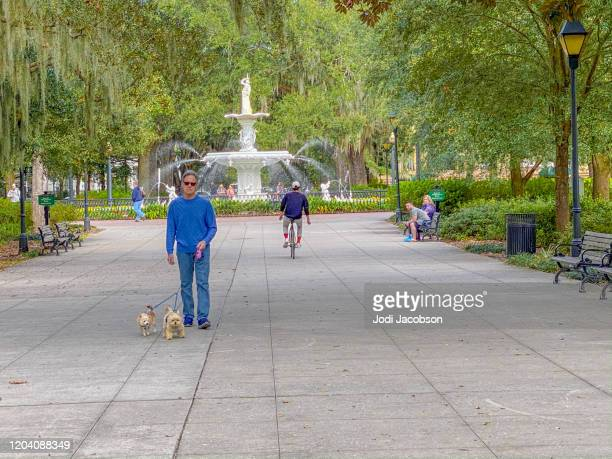 people enjoying the famous friendship fountain at forsyth park in savannah, georgia - southeast stock pictures, royalty-free photos & images