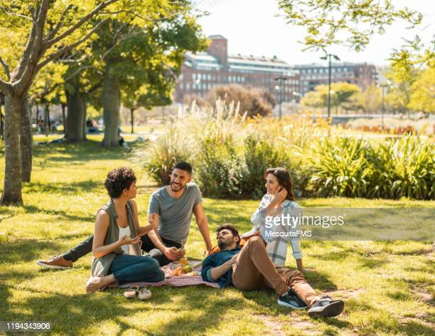 people enjoying the picnic in puerto madero - gras stock pictures, royalty-free photos & images