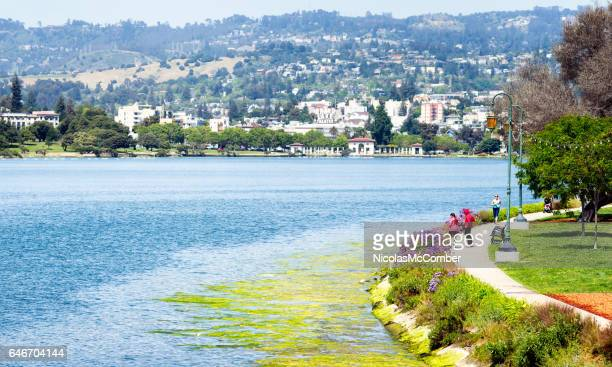 People enjoying the shores of Oakland's Lake Merritt