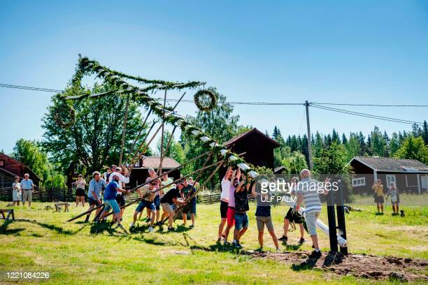 People erect a maypole for midsummer celebrations in Sahl near Leksand Sweden on June 19 2020 In the small village of Sahl in Dalarna midsummer is...