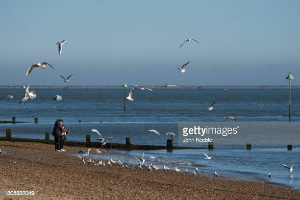 People feed the seagulls on the beach on February 28, 2021 in Southend-on-Sea, England.