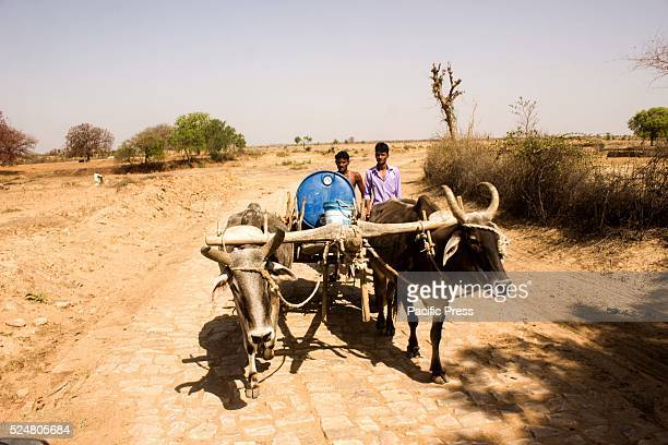 People fetch water Eighty per cent of Bundelkhands farmers are under debt Every day villages in this part of Uttar Pradesh are emptying out as the...