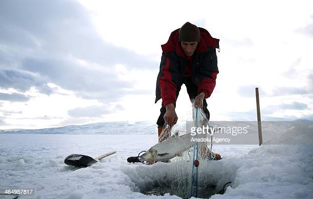 30 Top Eskimo Fishing Pictures, Photos and Images - Getty Images